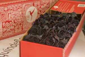 luxury black roses box pack