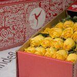 luxury yellow roses box pack