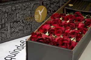 luxury red roses box pack